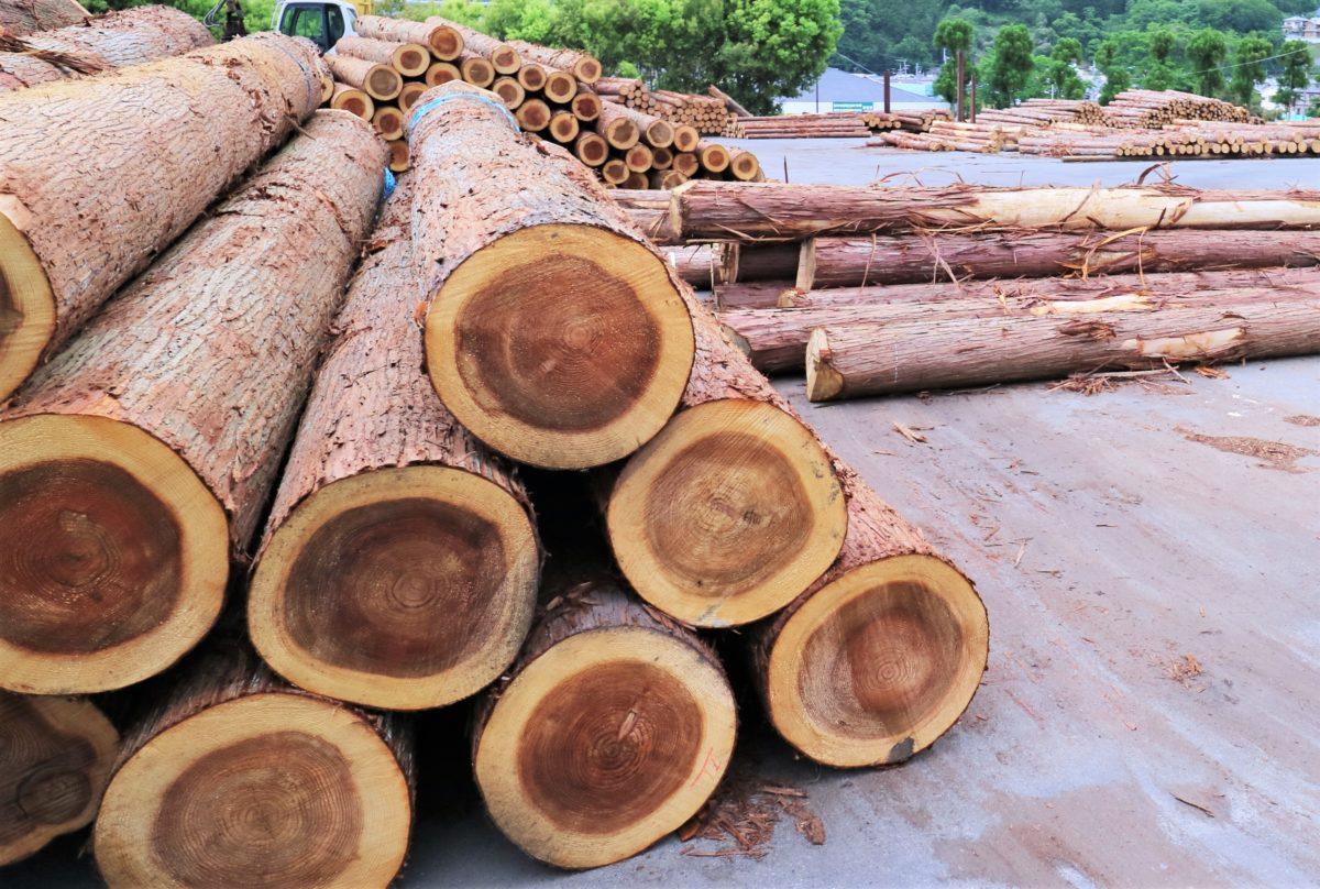 奈良県産 木材